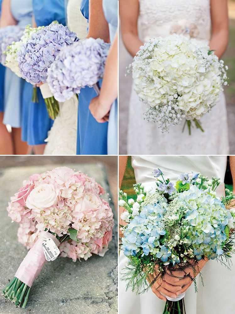 Свадебный букет из гортензии? в вариантах [2021] – синей, белой & фиолетовой с пионами и розами, а также фото